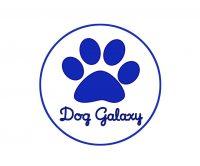 DOG_GALAXY_Pensione_e_Dog_Sitter_Forlì.jpg