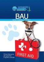 basic-animal-urgency-salvamento-academy.jpg