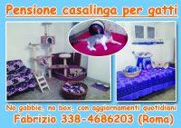 Educatore_Cinofilo_Dog_sitter_Pensione_casalinga_Roma_2.jpg