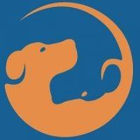 zeno-civitareale-educatore-cinofilo-e-consulente-nella-relazione-con-il-cane.jpg