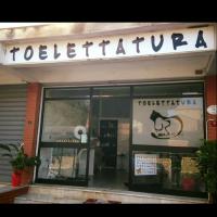 MiciFido-Toelettatura-Palermo-1.jpg