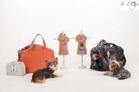 collezione2 it-dogs.jpg