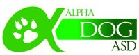 Alpha_Dog_Latina.jpg