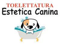 Toelettatura_Estetica_Canina.jpg