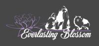 "Everlasting_Blossom"" Allevamento_Shih_Tzu.png"