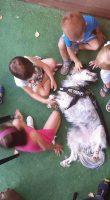 animal-touch-pet-therapy-e-stimolazioni-sensoriali-3.jpg
