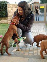 Dr.ssa Cristiana_Matteocci_Medico_Veterinario_Esperto_in_Comportamento_Animale.jpg