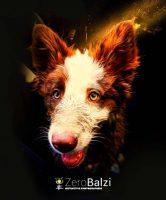 zero-balzi-storytelling-photography-3.jpg