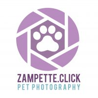 zampette-click-pet-photography-a-vicenza.jpg