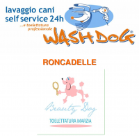 wash dog roncadelle.png
