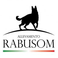 Allevamento_Pastore_Tedesco_Rabusom.jpg