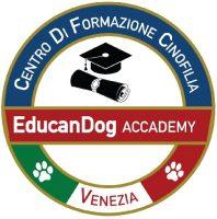 silverdog-centro-cinofilo-educatore-istruttore-cinofilo-certificato-venezia-3.jpg