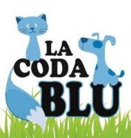 la-coda-blu-educazione-cinofila.jpg