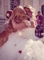 www.weddingdogsitter.com-matrimonio-con-il-cane-como-svizzera-76.jpg