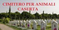 Cimitero_per_Animali_da_Compagnia_Caserta.jpg