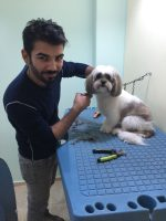 Grooming_Center_Toelettatura_Catania_4.jpg