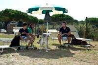 Spiaggia-Romea-Lido-delle-Nazioni-Ferrara-1.jpg