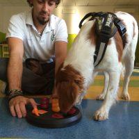 Personal-Dog-Trainer-Italia-Scuola-di-Educazione-cinofila_3.jpg