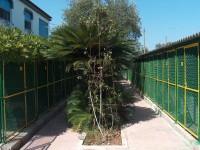 Allevamento-del-Levante-Pensione-per-cani-Bari-1.jpg