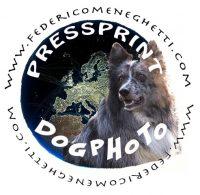 pressprint-di-meneghetti-federico.jpg