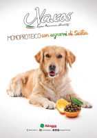 Adragna-Pet-Food-1.jpg