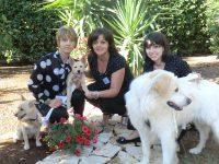 PET_SERVICE_CORATO_Pensione_Casalinga_e_Wedding_Dog_Sitting_2.JPG