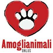 Amoglianimali_Onlus.jpg