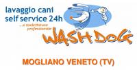 wash_dog_mogliano_veneto.png