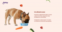 petter-food-diete-casalinghe-su-misura-per-cani-4