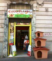 Cucciolandia-Pet-Shop-di-Vittorio-Quintiliano-Messina-5.JPG