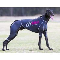 hidez-black_dog.jpg
