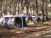 Camping-Le-Marze-Dog-Park-Marina-di-Grosseto-3.jpg