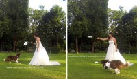 discdg wedding.jpg