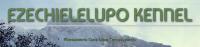 EZECHIELELUPO_Allevamento_Cane_Lupo_Cecoslovacco.png