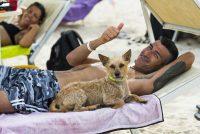 Tiliguerta_Dog_Beach_2.jpg