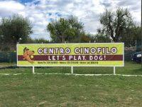 Centro_Cinofilo_Let's_Play,Dog_1.jpg