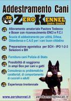 ZERO_KENNEL_Centro_Cinofilo_Addestramento_Cani.jpg
