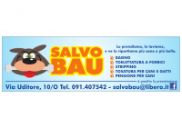 SALVO-BAU-Toelettatura-Palermo-1.jpg