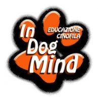 in-dog-mind-educazione-cinofila.jpg