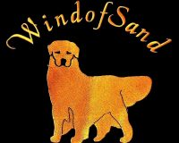 Wind-of-Sand-Allevamento-Golden-Retriever-Americani.jpg