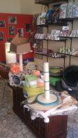 LA_CIOTOLA_Pet_Shop_Milano_1.jpg