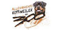 allevamento_rottweiler_piemonte.JPG