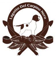 allevamento-lagotto-romagnolo-del-carpino-nero.jpg