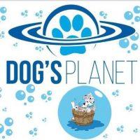 Dogs_Planet_Toelettatura.jpg