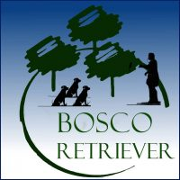centro-cinofilo-bosco-retriever.jpg