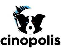 cinopolis-acsd.jpg