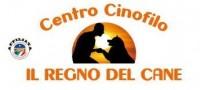 centro_cinofilo_il_regno_del_cane.jpg