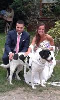 PET_SERVICE_CORATO_Pensione_Casalinga_e_Wedding_Dog_Sitting_3.png