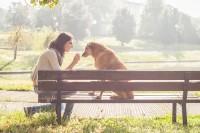 Lucrezia-Senserini-pet-photography-arezzo-2.jpg