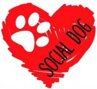 social 1.jpeg